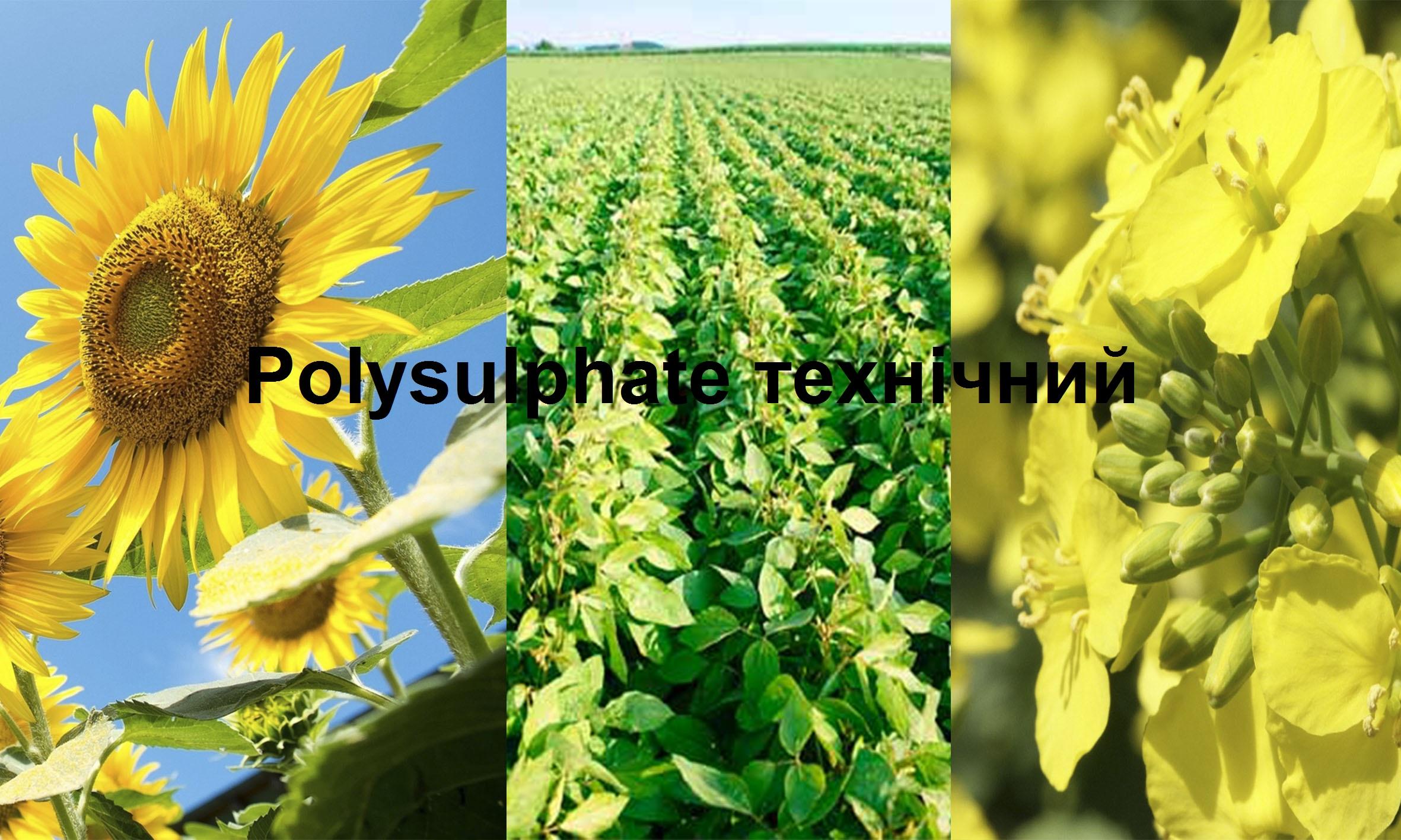 Полісульфат Технічний (N2-P8-K8-S31-Mg4-Ca10-В0,15)